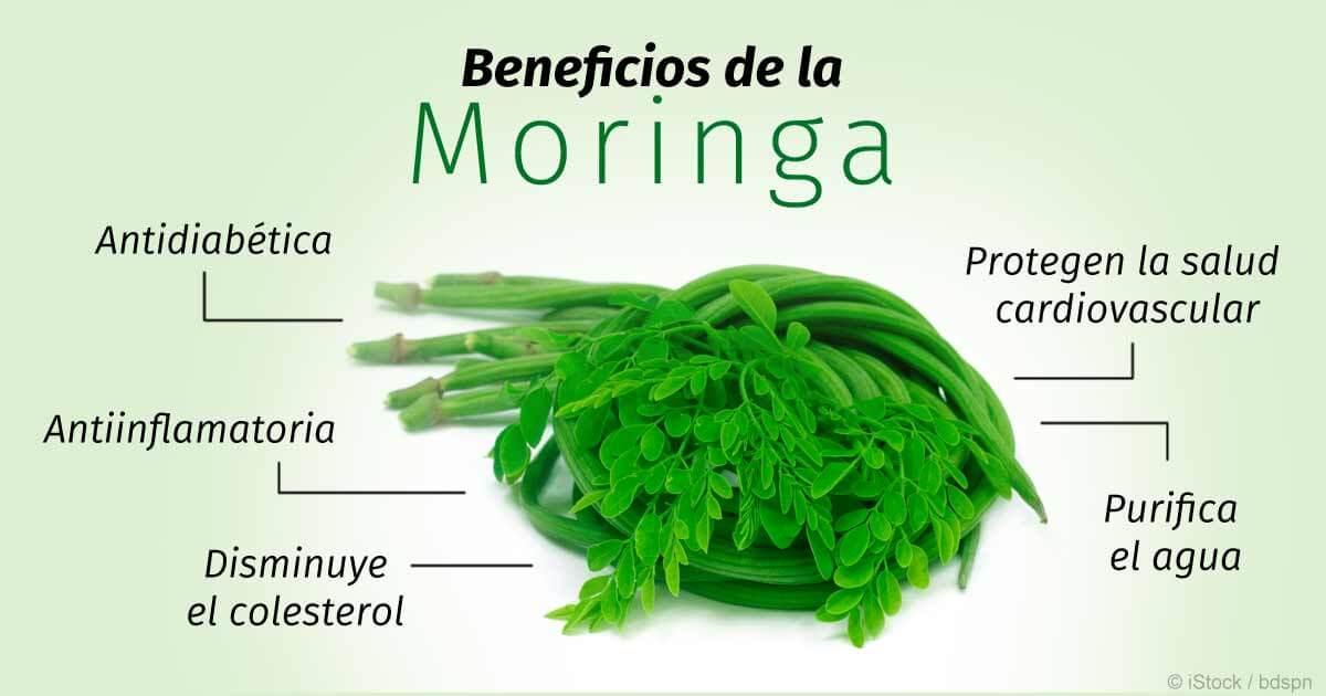 Beneficios del Moringa
