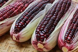 Beneficios de tomar maiz moradoen tu dia a dia