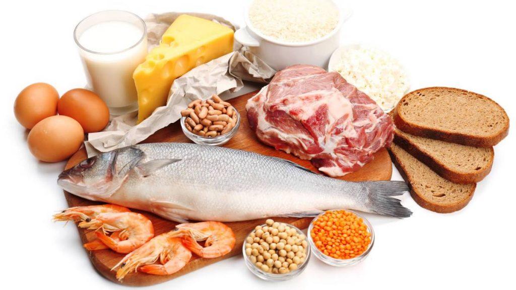 ¿Cuáles son las funciones de las proteínas?