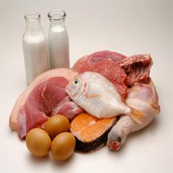 ¿De donde obtener la proteína animal?