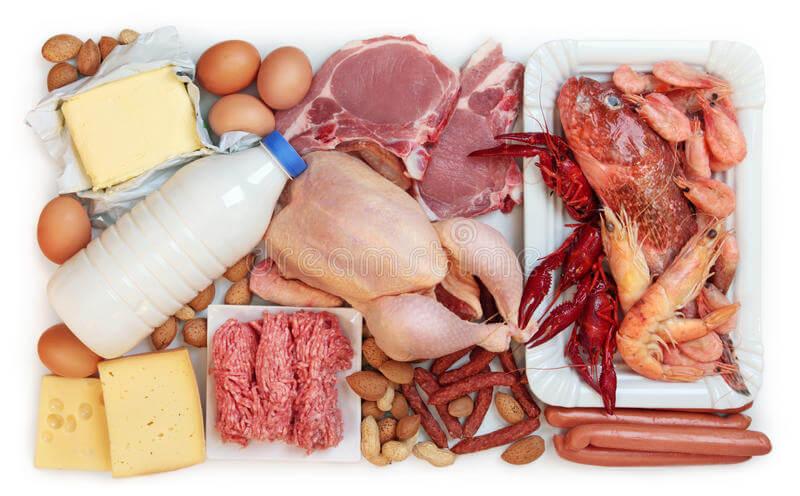 ¿Qué son las proteínas de origen animal?