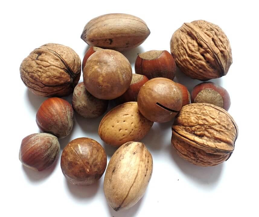¿Cuántas proteínas tienen los frutos secos?