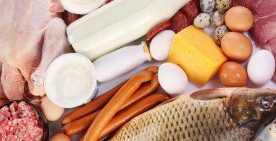 Proteínas animales: Carnes, pescados, huevos y lácteos