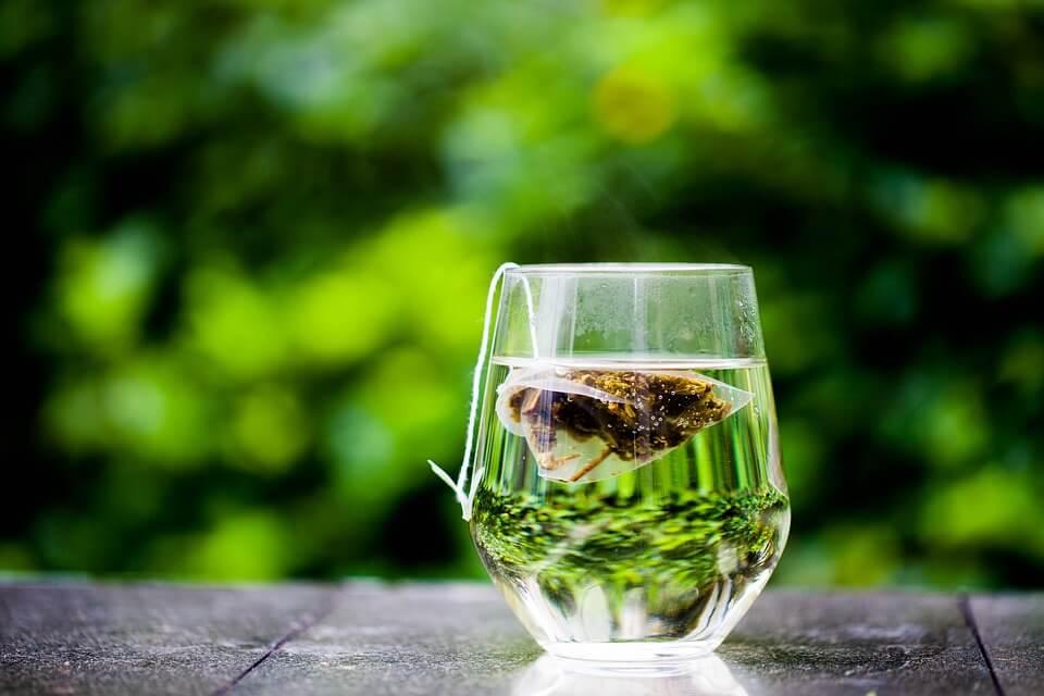 ¿Por qué se dice que se puede adelgazar con té verde?