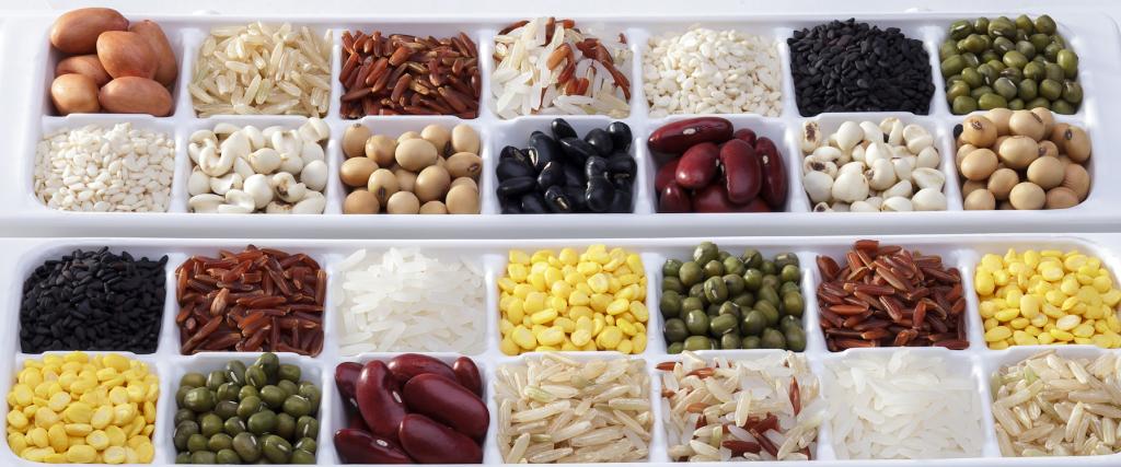 Fuentes de proteína vegetal