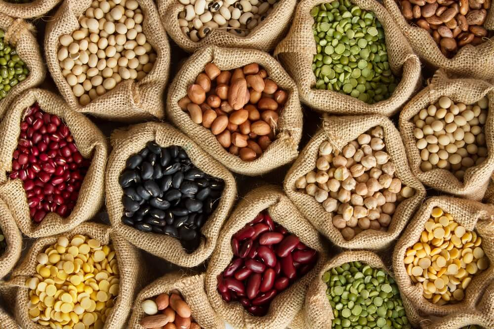 ¿Qué son las proteínas vegetales?