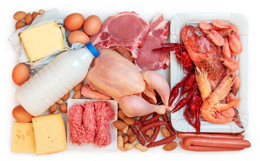 Alimentos permitidos en la dieta proteica